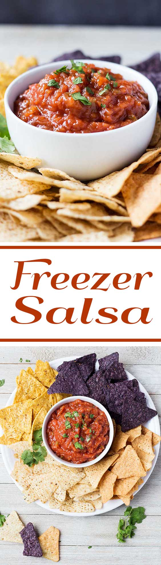 Freezer Salsa | This freezer salsa recipe is a great way to use tomatoes from your garden! Skip the extra steps for canning, and just package for the freezer - it will keep for 3-6 months or longer!!